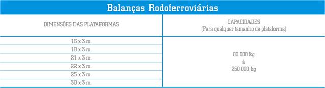 4100 – RF Rodoferroviária